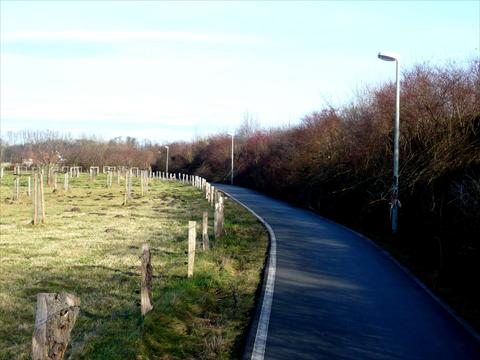 Bicycle path in the country
