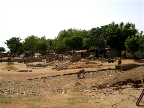 Near the Niger River